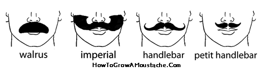 how to grow a twirly moustache
