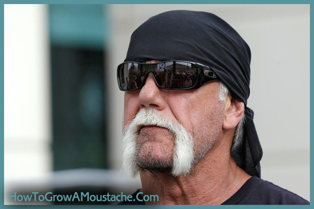 celebrity mustaches | Moustaches, Mustaches, & Mos ...