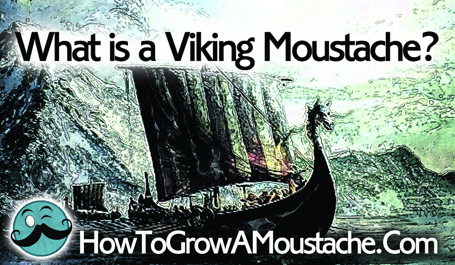 What is a Viking Moustache?